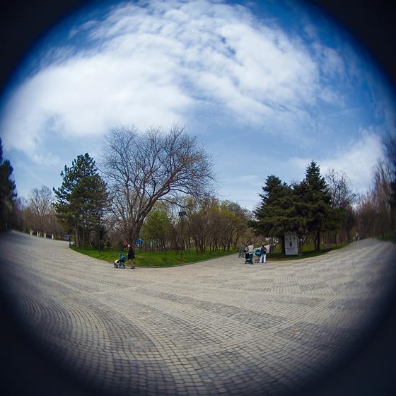 La plimbare pe aleile din parcul IOR