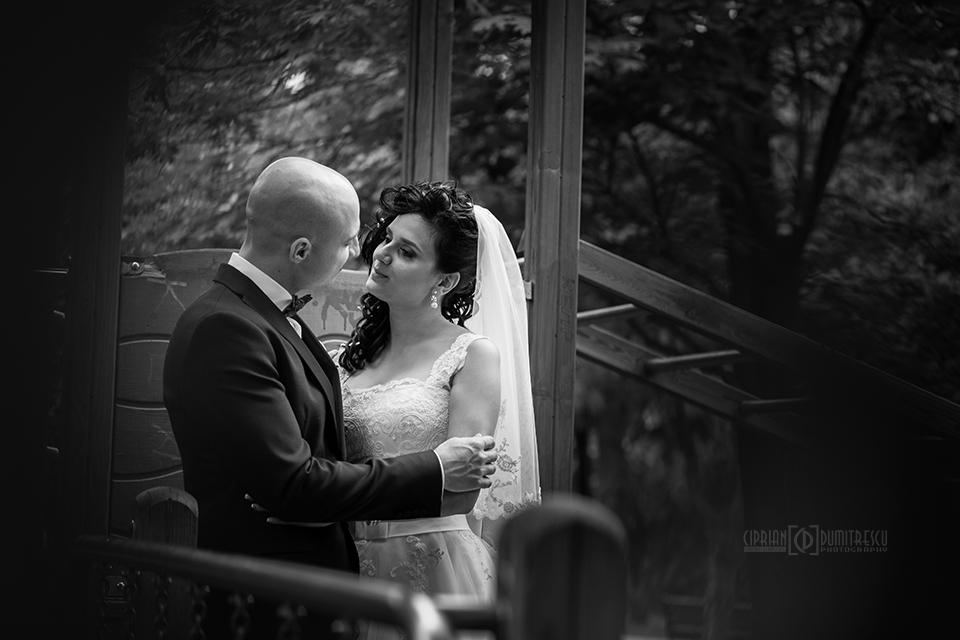 0799-Fotografie-nunta-Andreea-Bogdan-fotograf-Ciprian-Dumitrescu