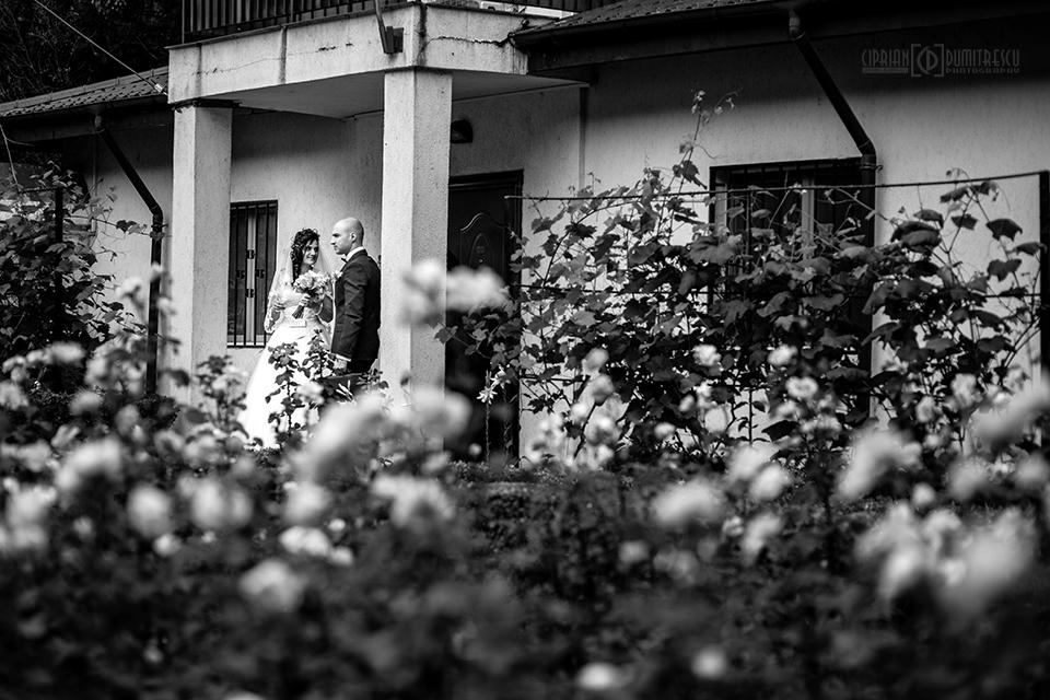 0827-Fotografie-nunta-Andreea-Bogdan-fotograf-Ciprian-Dumitrescu