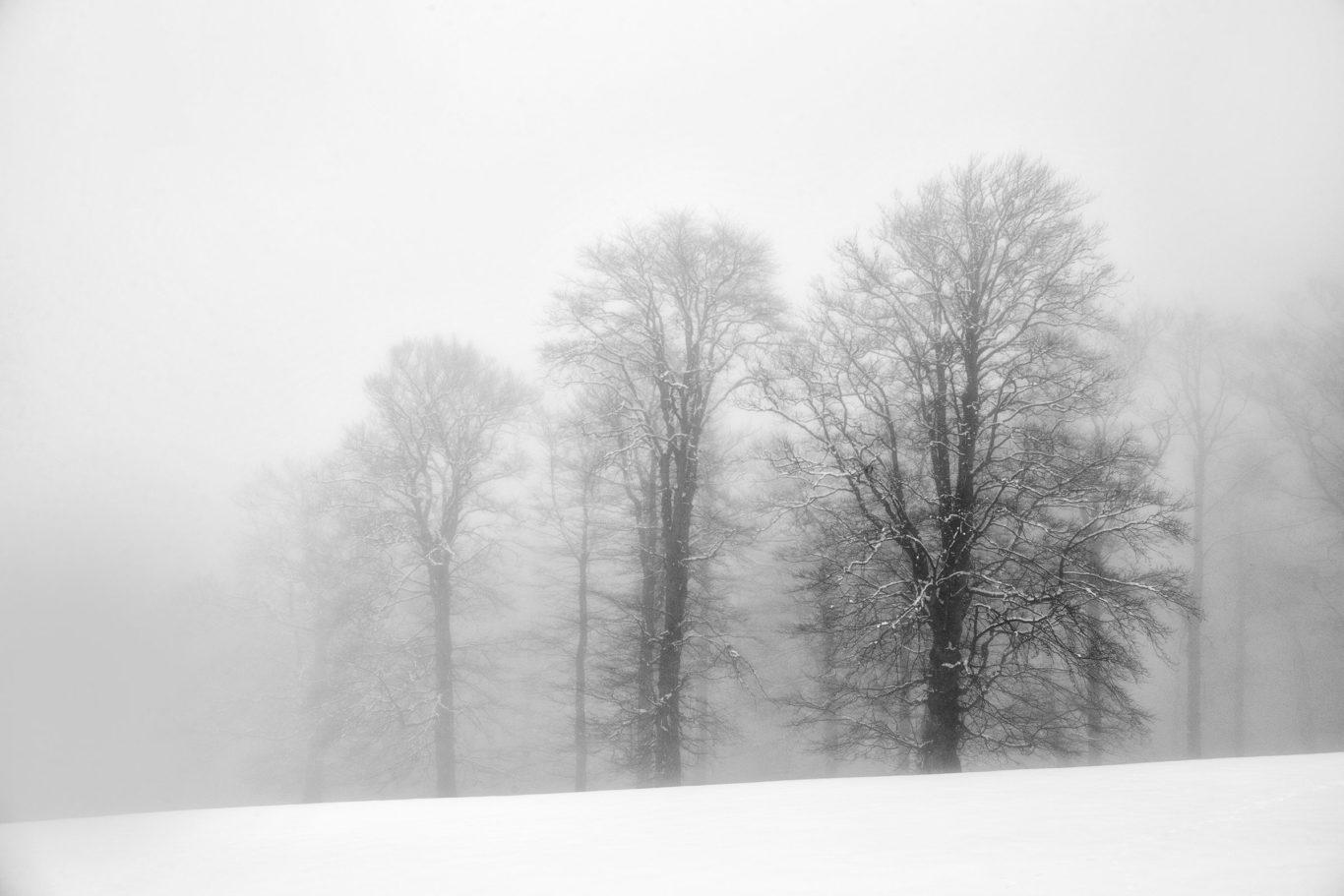 0107-Redbull-Oslea-Hiride-2016-fotograf-Ciprian-Dumitrescu-DC1X4015