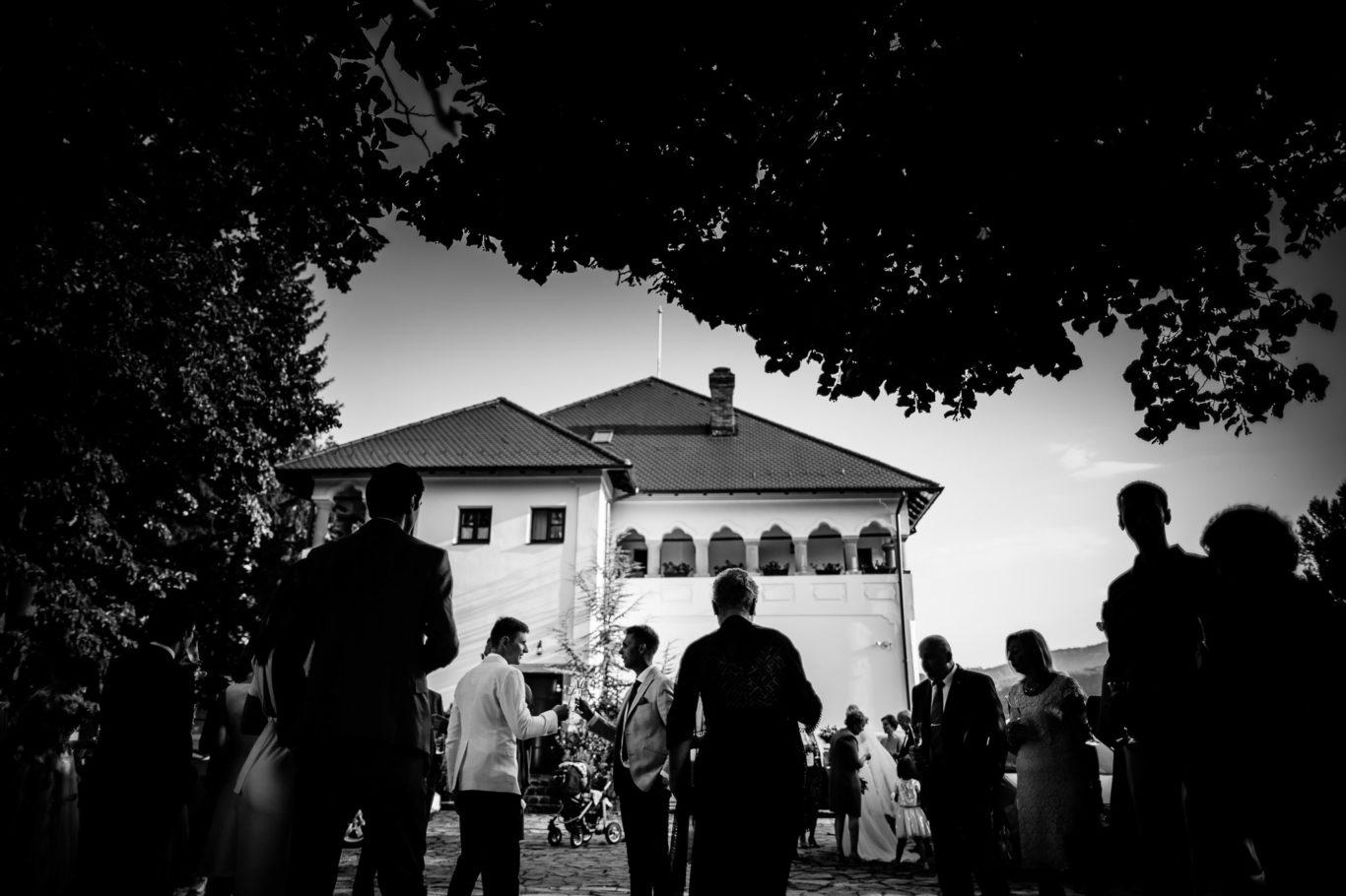 0404-fotoreportaj-nunta-conacul-maldar-cristina-stefan-fotograf-ciprian-dumitrescu-dc1_2582