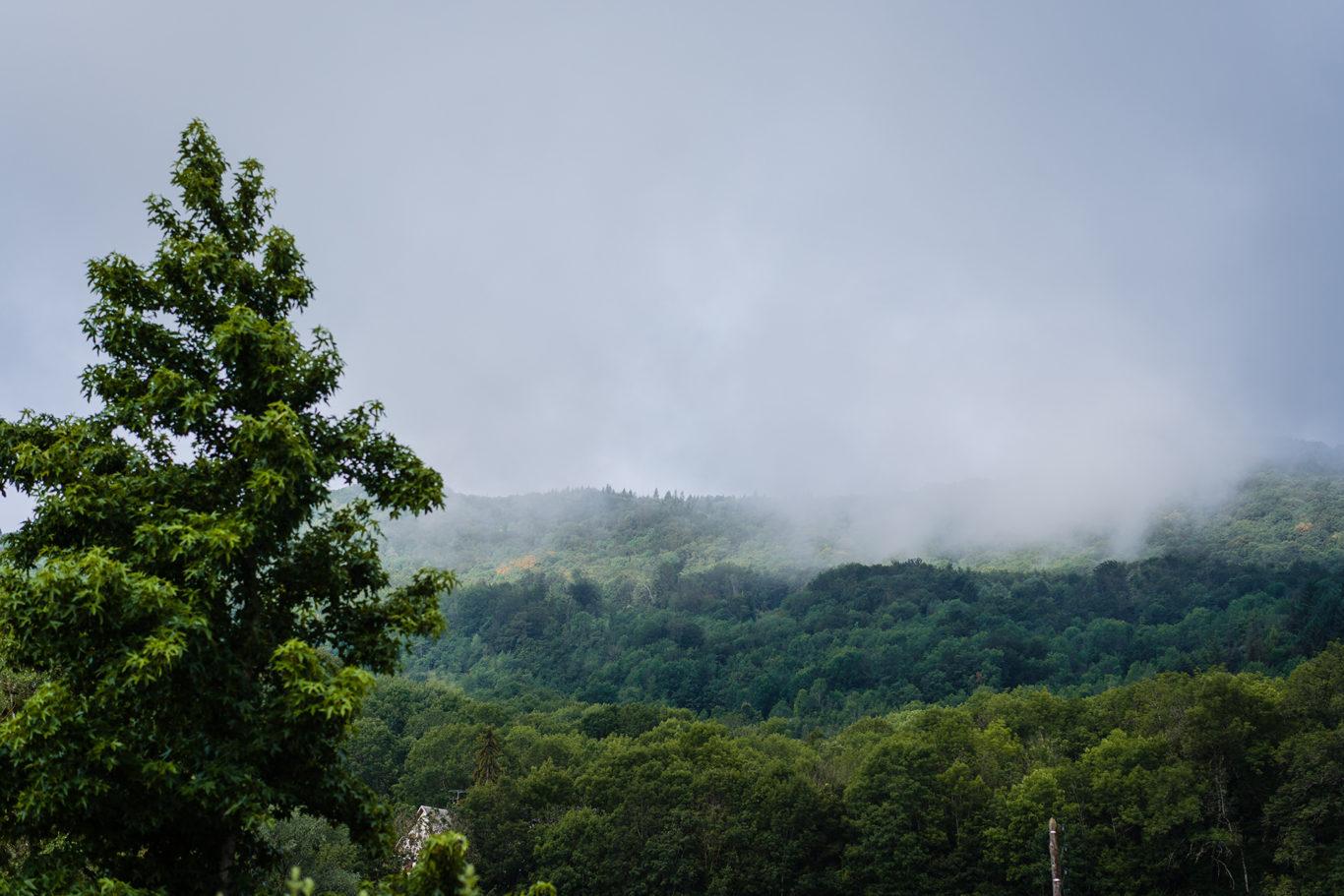 Ceata pe dealurile din Franta